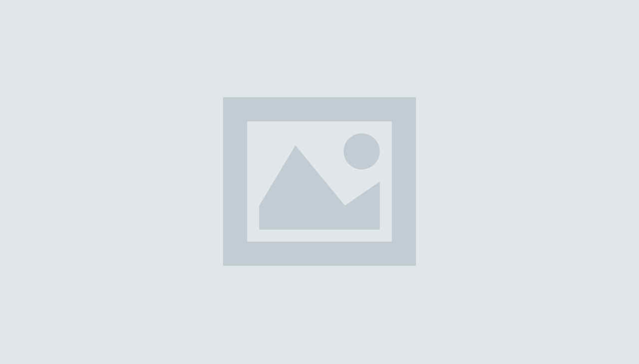 Single post (Demo)